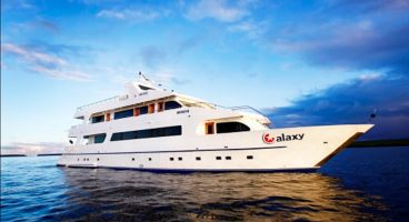 Croisière nature aux Galapagos - Galaxy -
