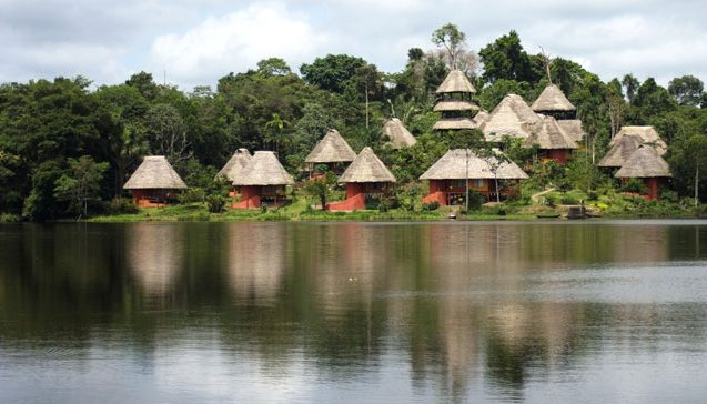 Amazon - Nature Experience - Travel agency specialized in nature trips