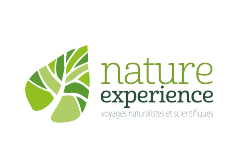 Nature Experience