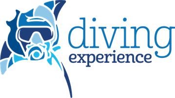 Diving Experience - Travel agency specialized in diving